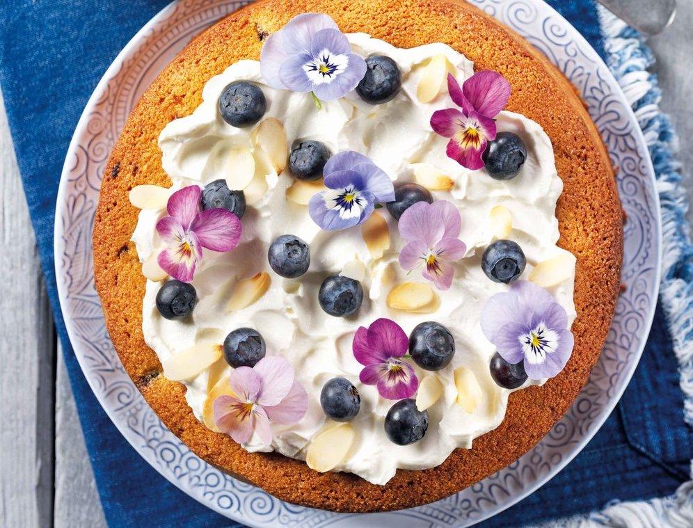 Lemon Polenta Cake Without Almonds